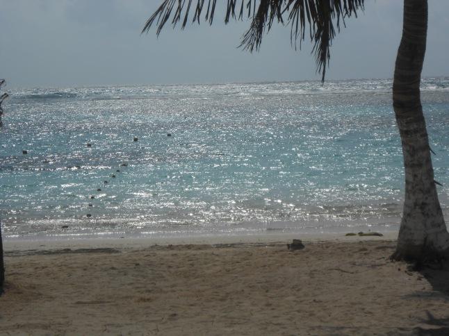 wed beach 015