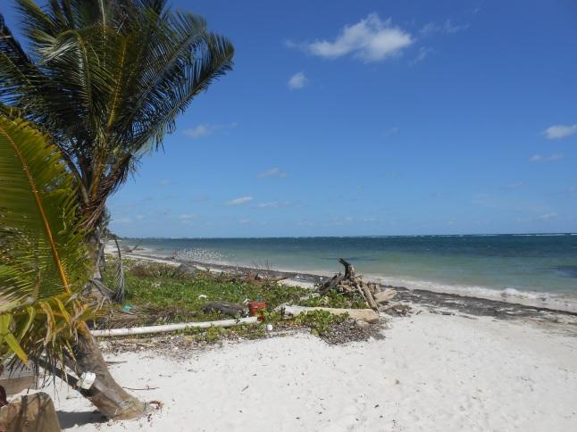 Beach at Captains