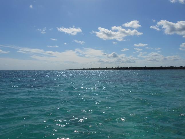 snorkeling trip captain huachos 039