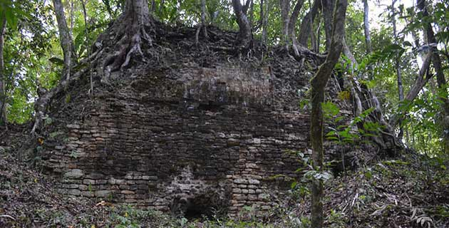 This Mayan city had its peak during the Classic Period.