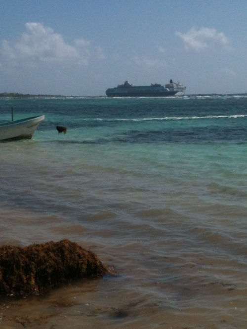 Last 2 ship day of 2014-2015 season, last Friday.