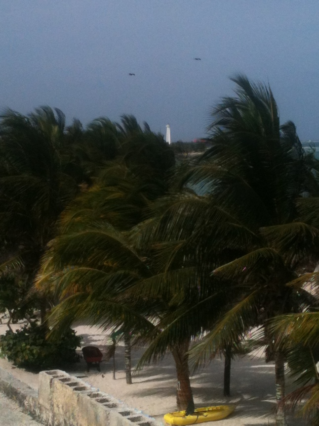 Mahahual lighthouse in background through palm trees.