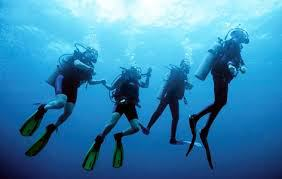 group-divers