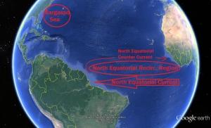 North Equatorial Recirculation Region.