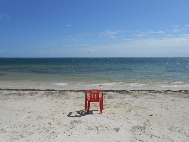 My quiet reading spot on the beach.