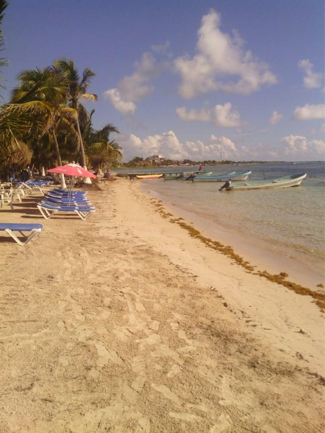 Beach yesterday.