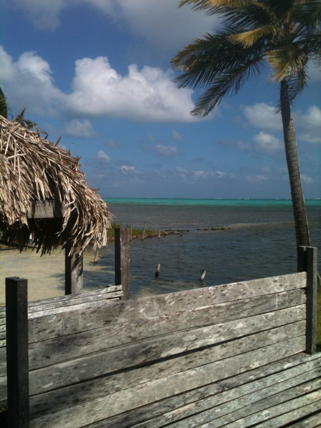 View from our table at Costa de Cocos.