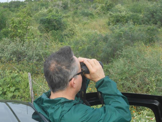 Bob Critser birdwatching.