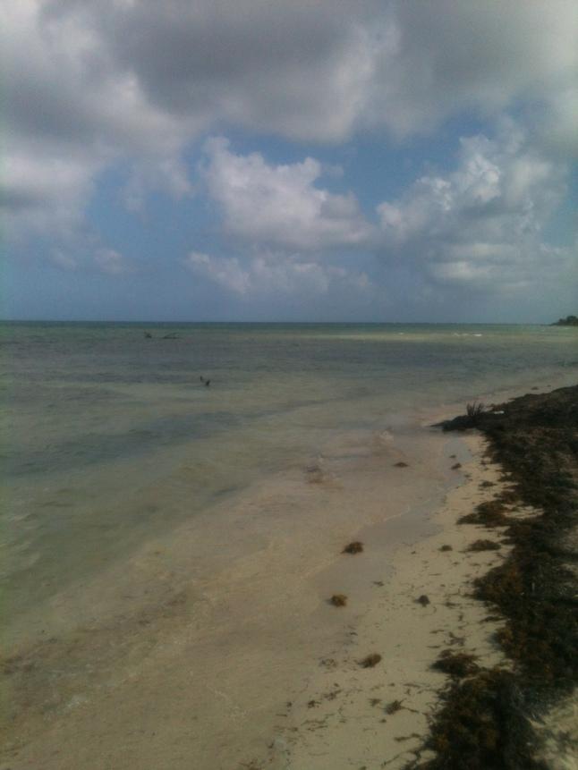 Beatiful, clear Caribbean waters.