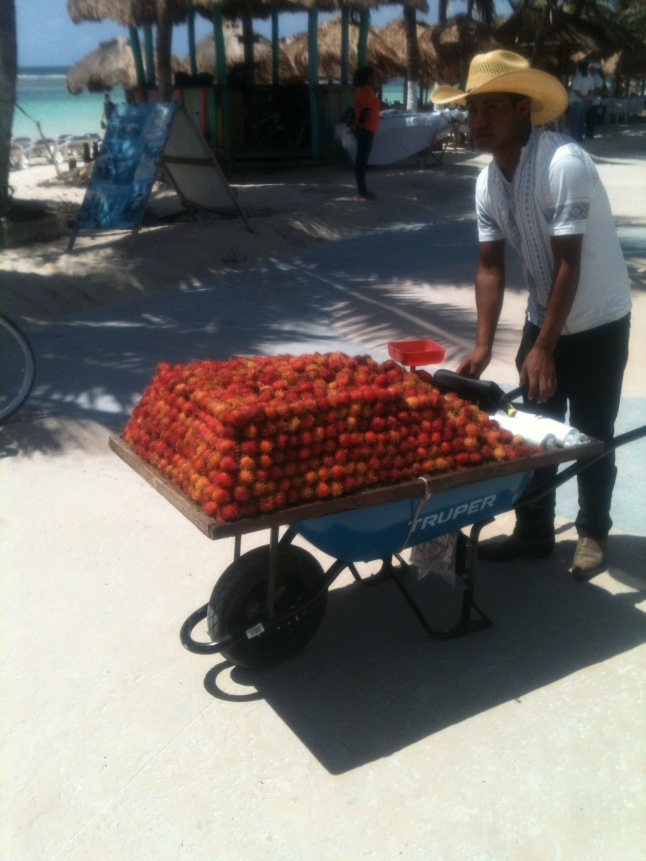 Vendor selling rambutan on malecon today, first time I have seen it this year.