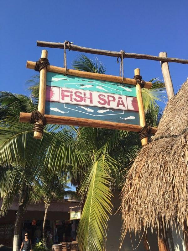 Costa Maya Fish Spa.